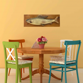 Fishtrophy-on-wall526fd5890eeb6-280x280