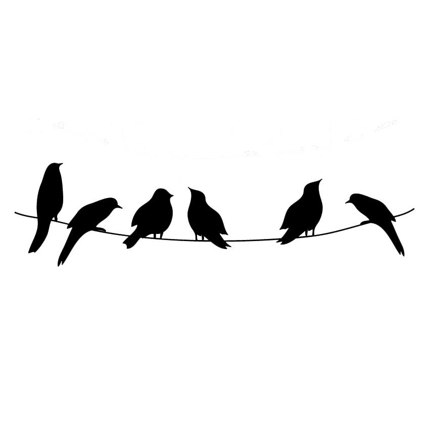 birds on line wall decal