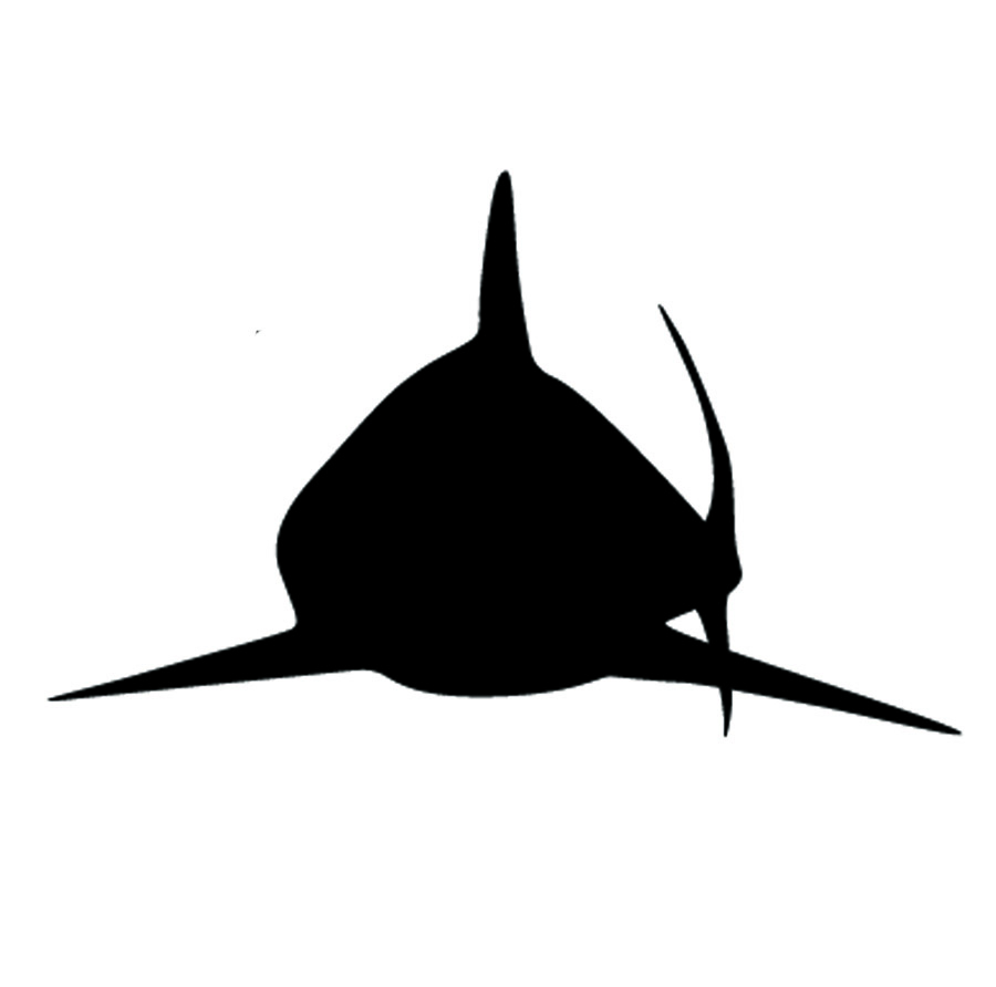 Shark Wall Decal 2 Removable Wall Stickers And Wall Decals