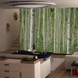 Aspen trees wall mural