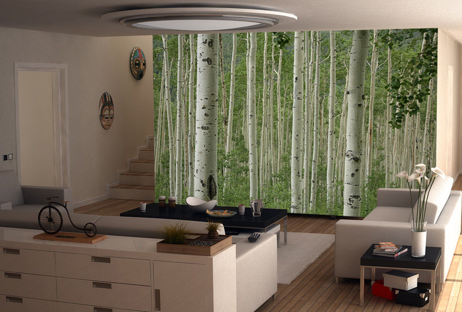 aspen trees wall mural and removable wall decal aspen birch forest wall mural nature wall mural eazywallz