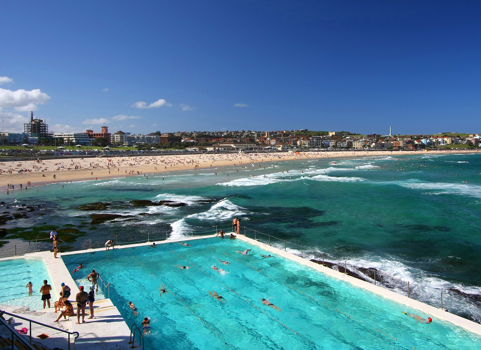 Bondi Beach Icebergs Wall Mural and Removable Sticker