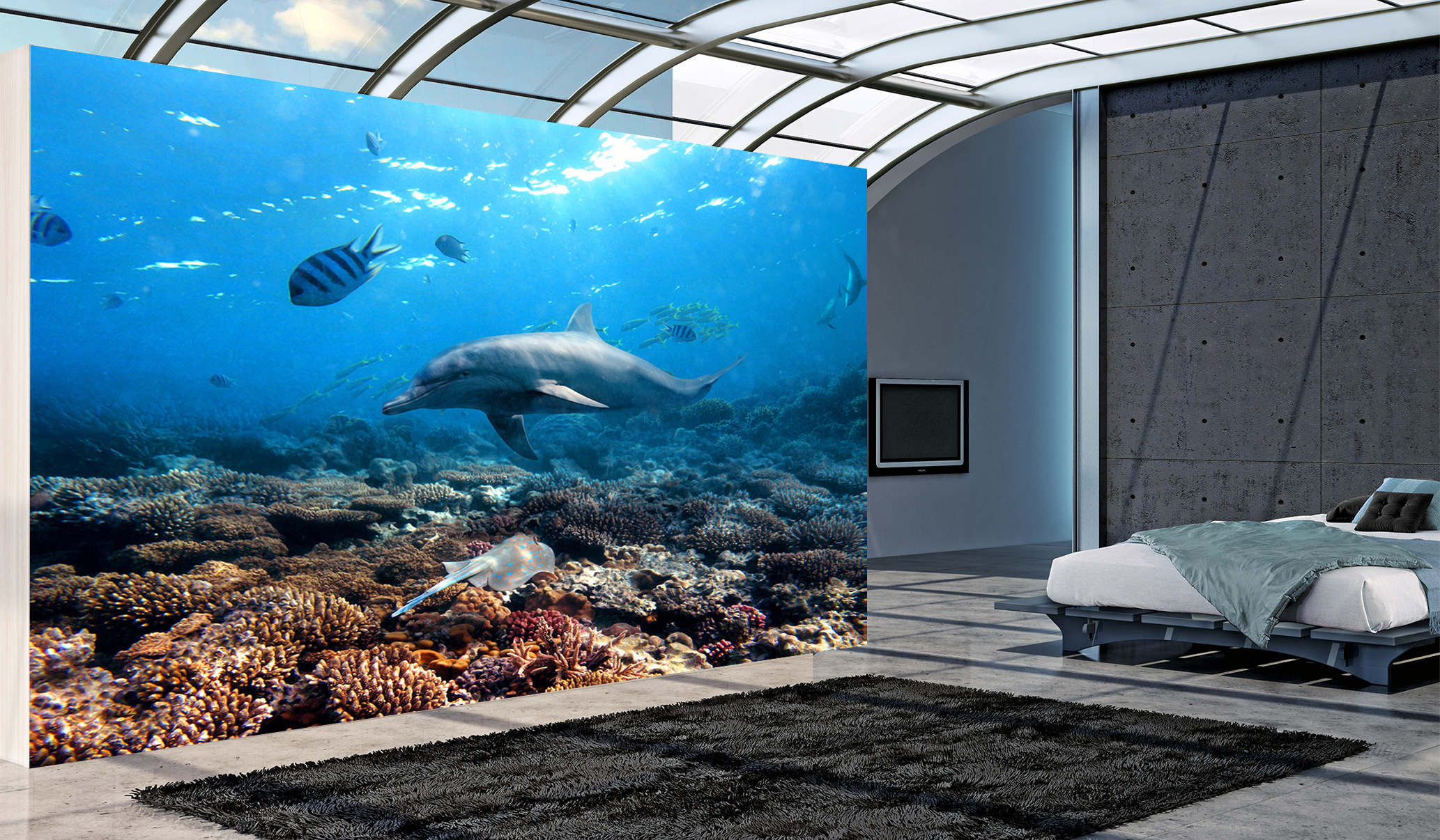Mural wallpaper for home 2017 2018 best cars reviews for Dolphin wall mural