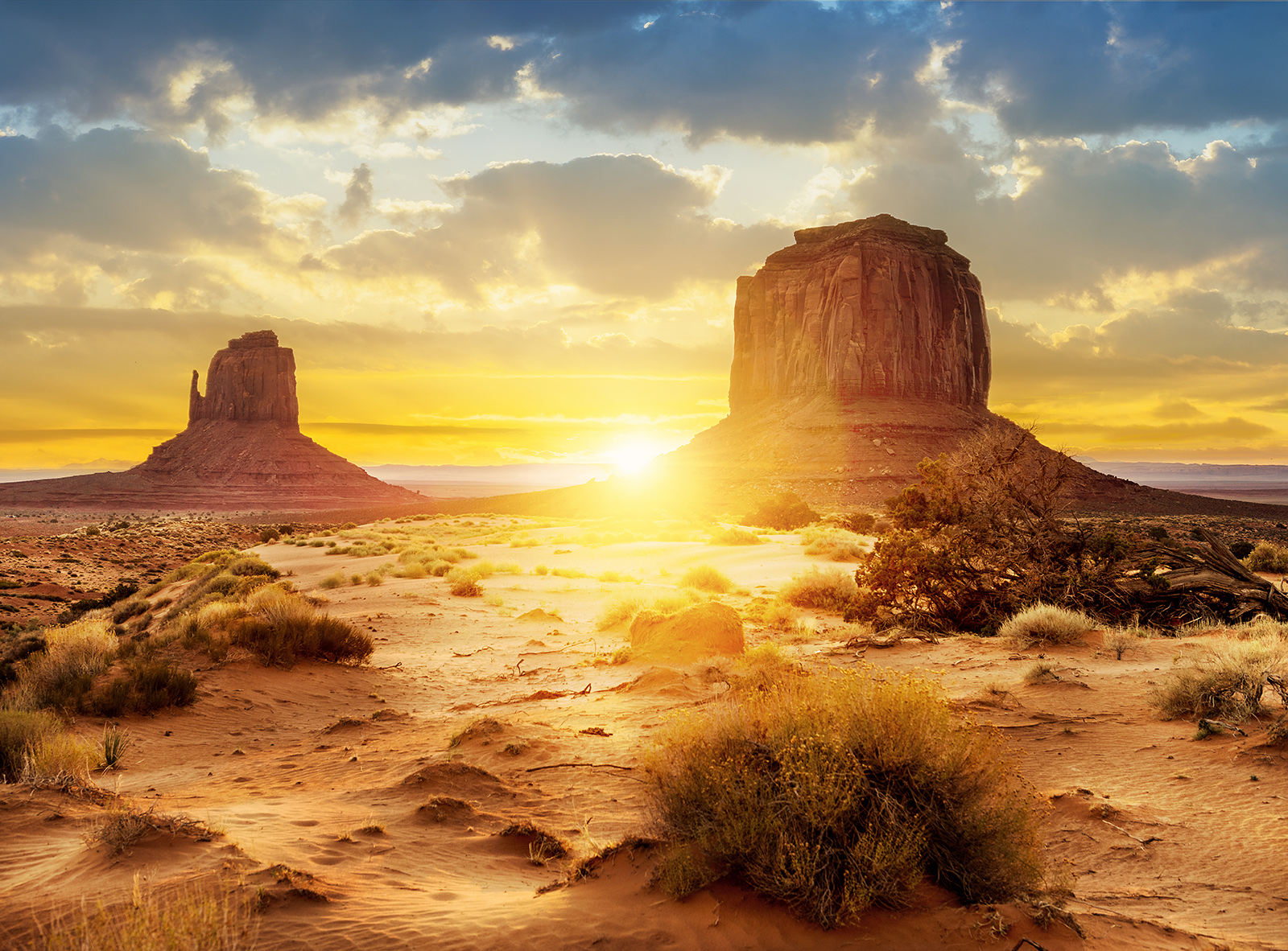 desert sunset wall sticker