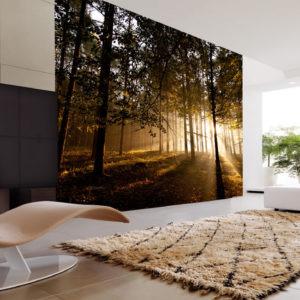 mystical forest wall mural