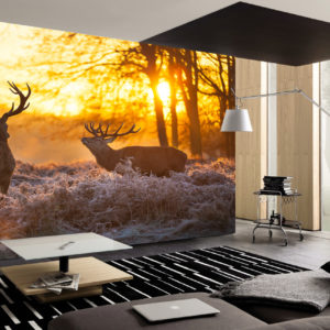 sunset stags wall mural